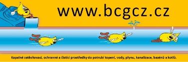 Hlavní partner - BCG